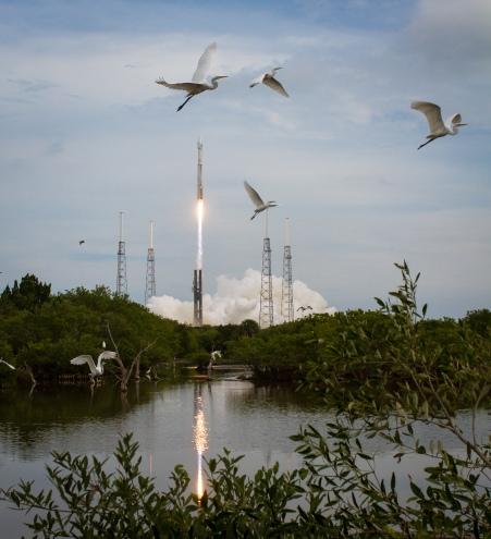 Taking Flight at Cape Canaveral Credit: (NASA/Bill Ingalls)